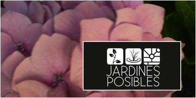 Jardinería - Diseño de jardines - Estanques en Becerril de la Sierra