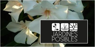 Jardinería - Diseño de jardines - Estanques en Hoyo de Manzanares