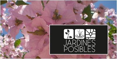 Jardinería - Diseño de jardines - Estanques en Las Rozas