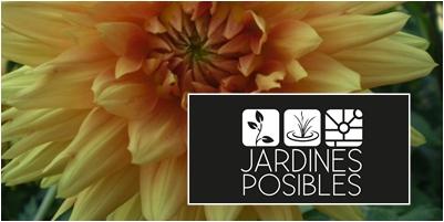 Jardinería - Diseño de jardines - Estanques en Manzanares El Real