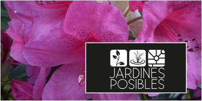 Mantenimiento de jardines en Moralzarzal
