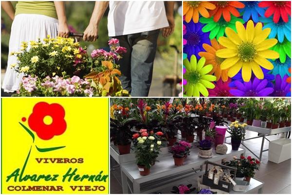 Empresa de jardiner a y paisajismo for Viveros madrid norte